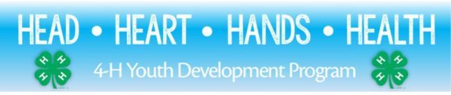 Head Heart Hands Health