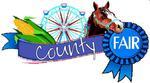 county_fair_2