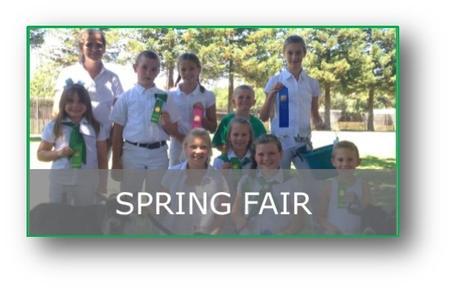 Spring Fair County