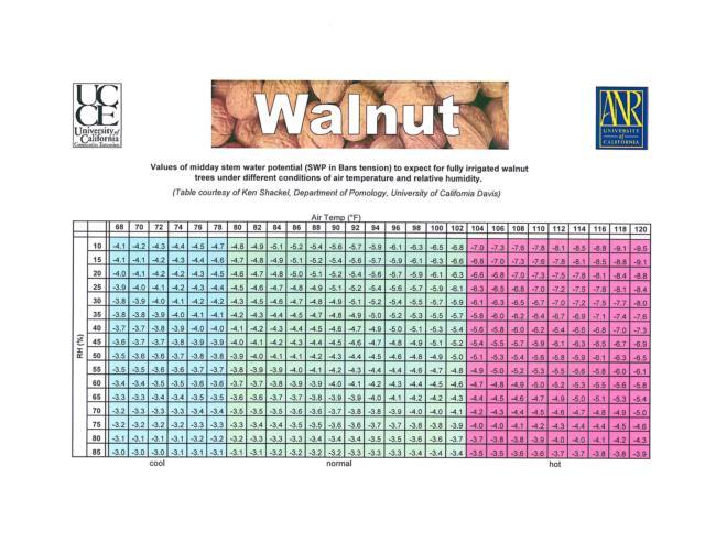 Walnut Stem Water Potential (SWP) Baseline